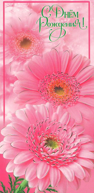 Фото высокого разрешения фон цветы